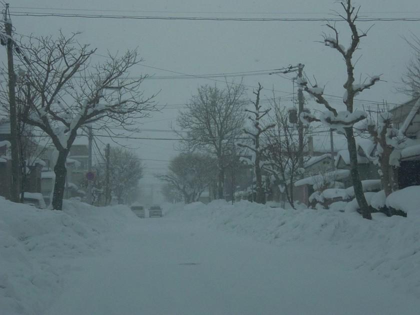 雪降ってる。いっぱい。