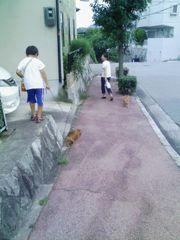 お散歩-1