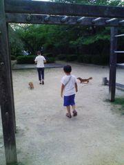 お散歩-2