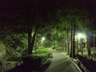 城山公園-2