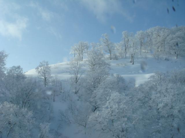 田代の樹氷