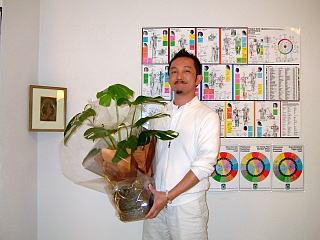 茅ヶ崎市の整体院 ちがさき整体クリィニク 4周年 お祝いのモンステラ