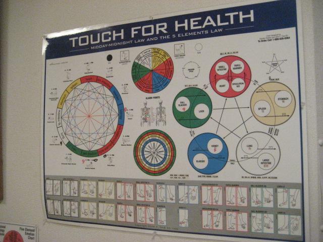 タッチフォーヘルス キネシオロジーセミナー
