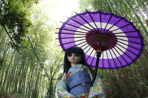 嵯峨野の竹林と藍