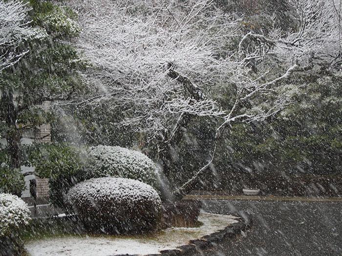 雪の天使の里