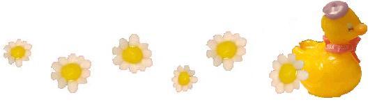 アヒルお花ライン
