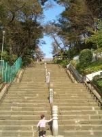 本門寺階段(下から)