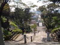 本門寺階段(上から)