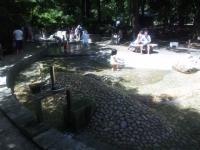 林試の森(水遊び)