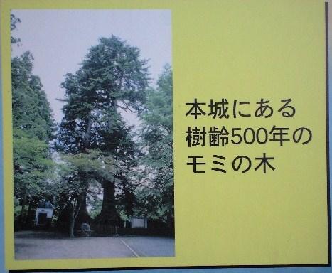 史跡七戸城跡ガイド地図9