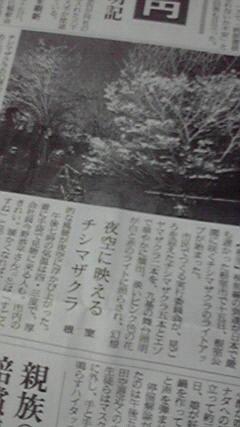 P1010296.jpg