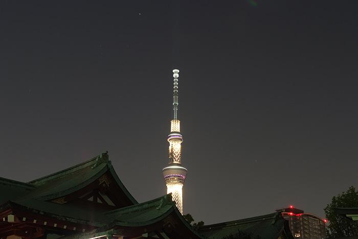 14.4.26_亀戸天神の夜藤ライトアップ12