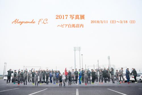 2017w6.jpg