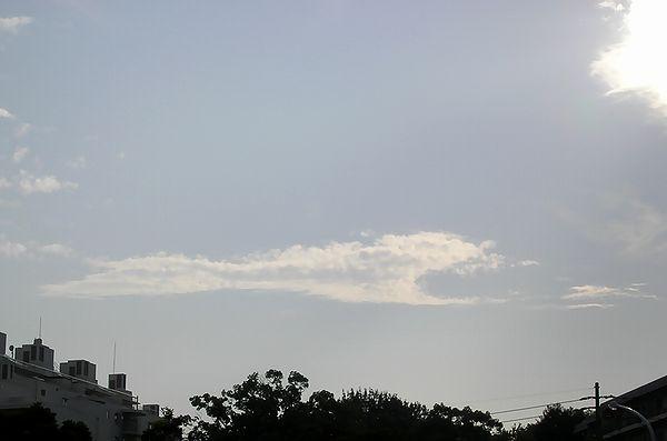 雲(その一): 鯨みたいな雲