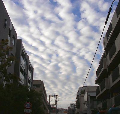 雲(その一): ウロコみたいな雲