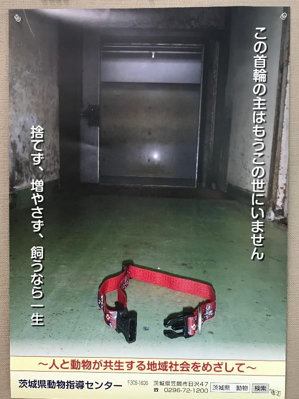 二枚目00.JPEG