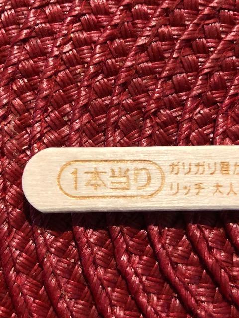 IMG_5389atari3.jpg