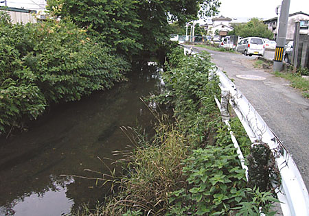 弥生町2008年7月