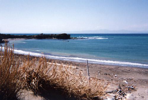 相模湾〜三浦半島のどこか90年冬