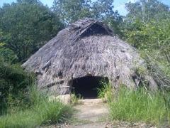 竪穴式住居外観
