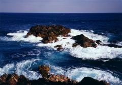 牡鹿半島(1994.1.14)