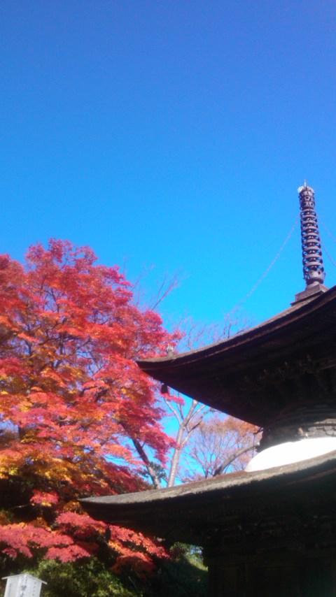善峯寺2012.11.25