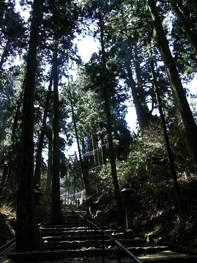 叡山。足が痛いピークで絶望するほど広かった