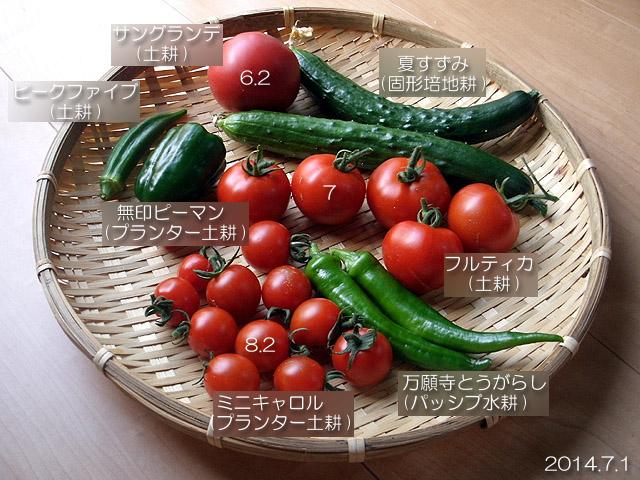 夏野菜 収穫 トマト オクラ 万願寺とうがらし ピーマン
