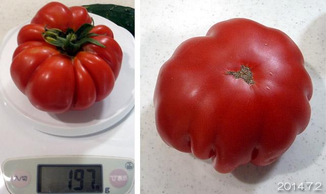 ロッソロッソ 大玉トマト 重量