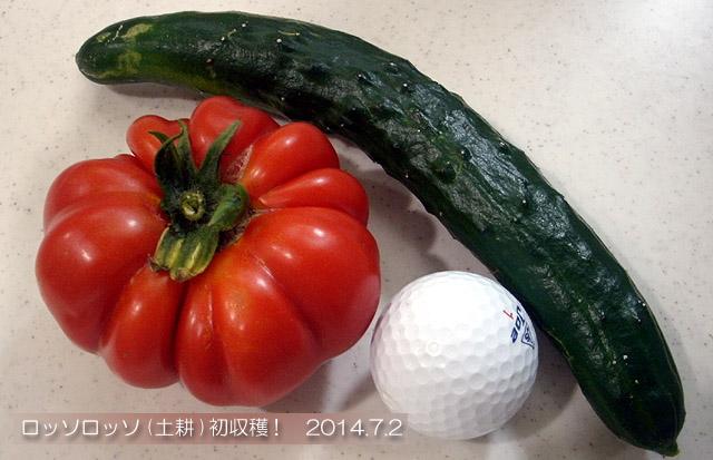 ロッソロッソ 大玉トマト