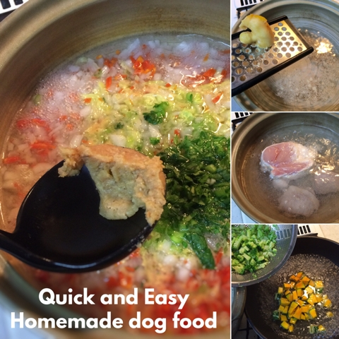 quick and easy homemade dog food