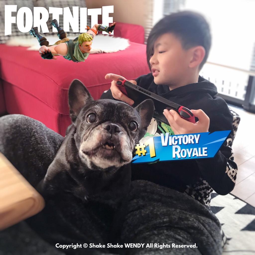 フォートナイト Fortnite #1 Victory Royale