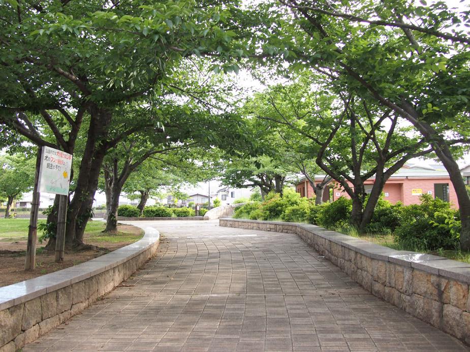 駅から練習場所までの公園