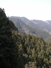 秩父の渓谷