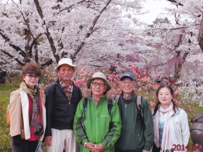 6_植物園の桜.jpg