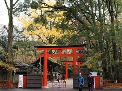1河合神社の紅葉.JPG