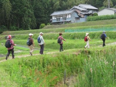 9_田舎道を歩く.JPG