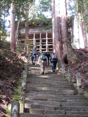 7.奥の院に向う石段.JPG