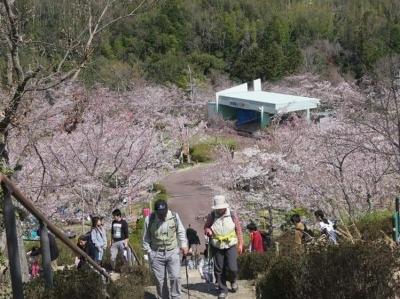 15_公園の階段を登る.jpg