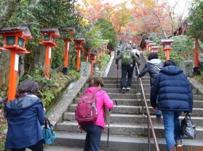 4_長い階段を登る.jpg