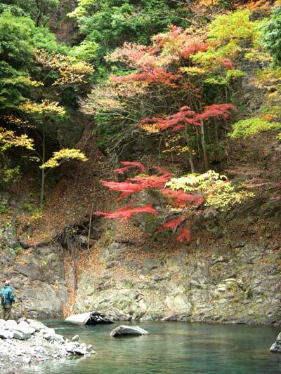 秋のうらたんざわ渓流釣り場