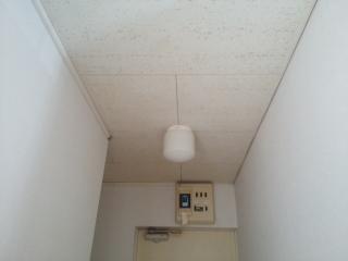 照明器具確認2