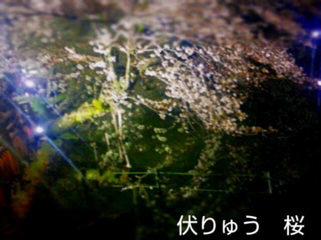 20140426_160912.jpg