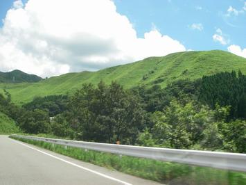 夏雲・・・青い空とまばゆい緑