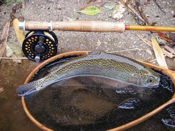 一年の釣り収め・・・・来年はいつから始めようかな?^^
