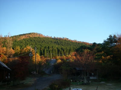 キャンプ場風景。