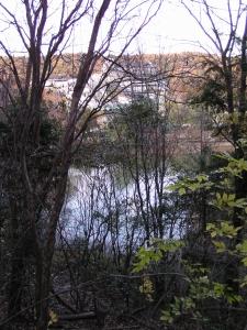 散策路から吉田池を望む