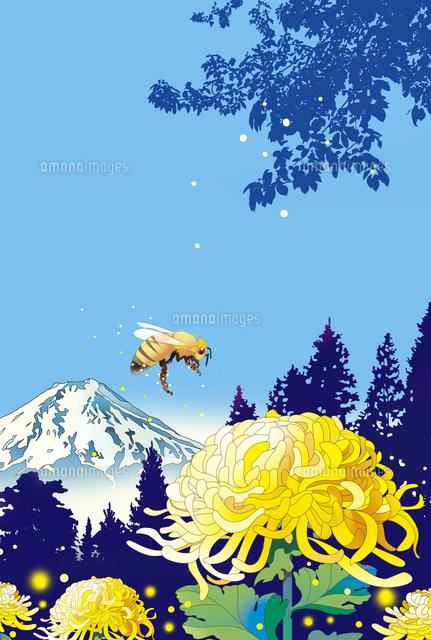 和風カレンダー 富士山 菊 カレンダーイラスト