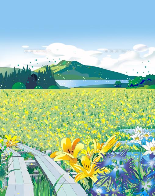 和風景、和風、風景イラスト、尾瀬、鼻