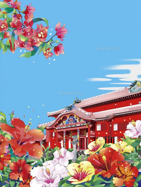 首里城 沖縄 ハイビスカス ブーゲンビリア、イラスト、和風景、和風風景、風景イラスト